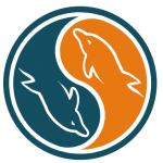 مانیتور دیتابیس MySQL با استفاده از ابزار Mytop